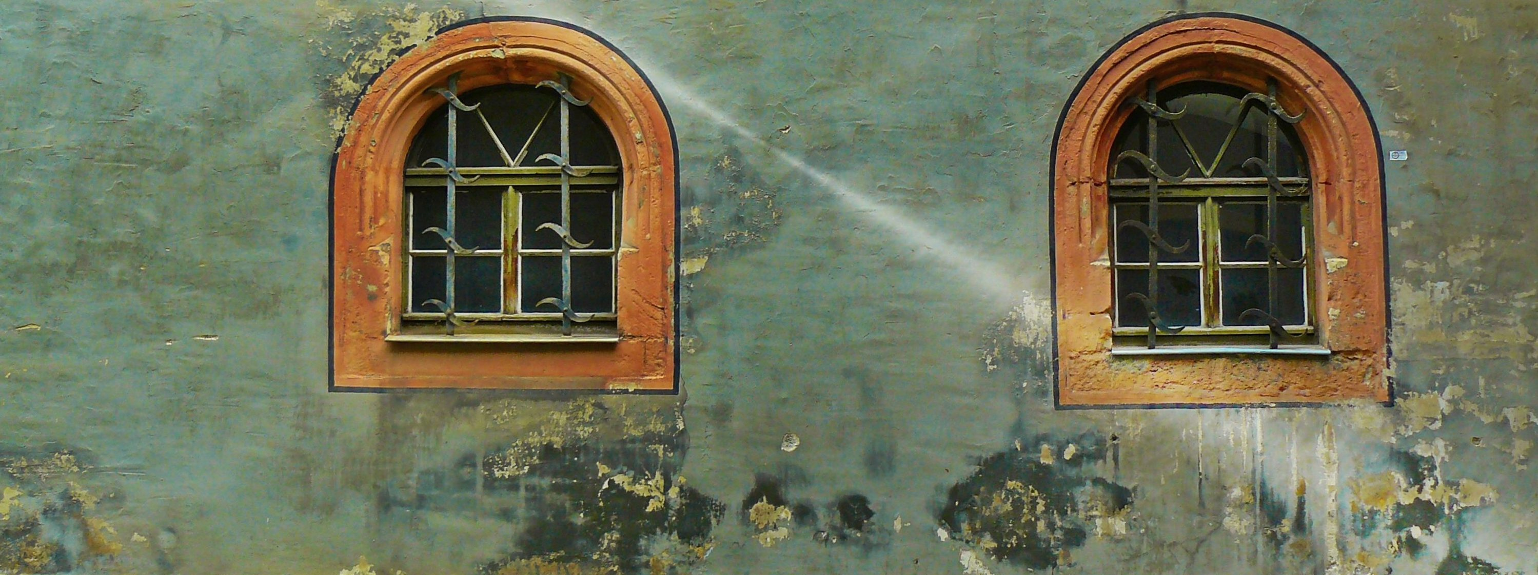 mould old house